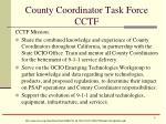 county coordinator task force cctf