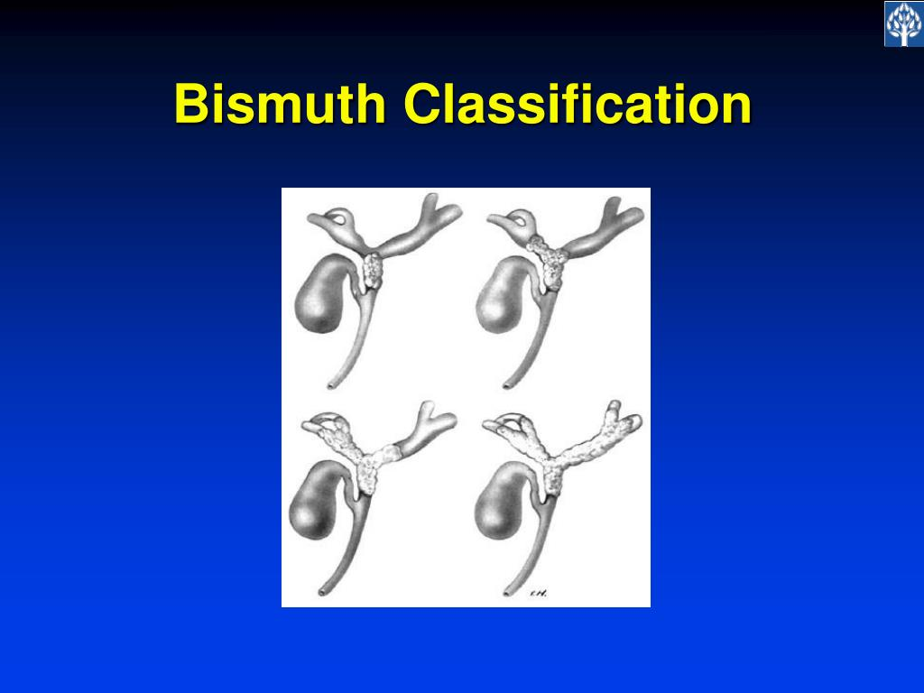 Bismuth Classification