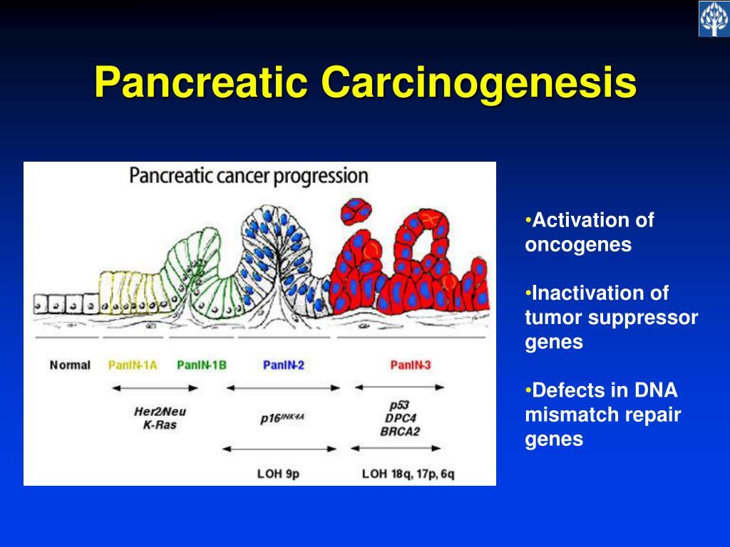 Pancreatic Carcinogenesis