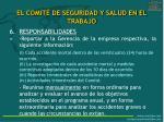 el comit de seguridad y salud en el trabajo14