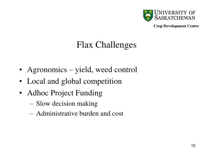 Flax Challenges