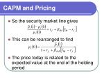 capm and pricing22