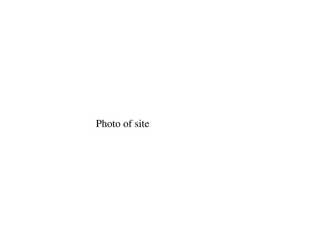 Photo of site