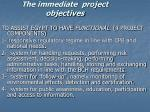 the immediate project objectives
