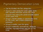 pigmentary demarcation lines