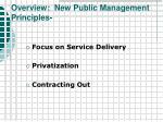 overview new public management principles