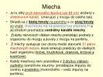 miecha