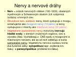 nervy a nervov dr hy