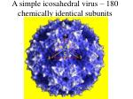 a simple icosahedral virus 180 chemically identical subunits