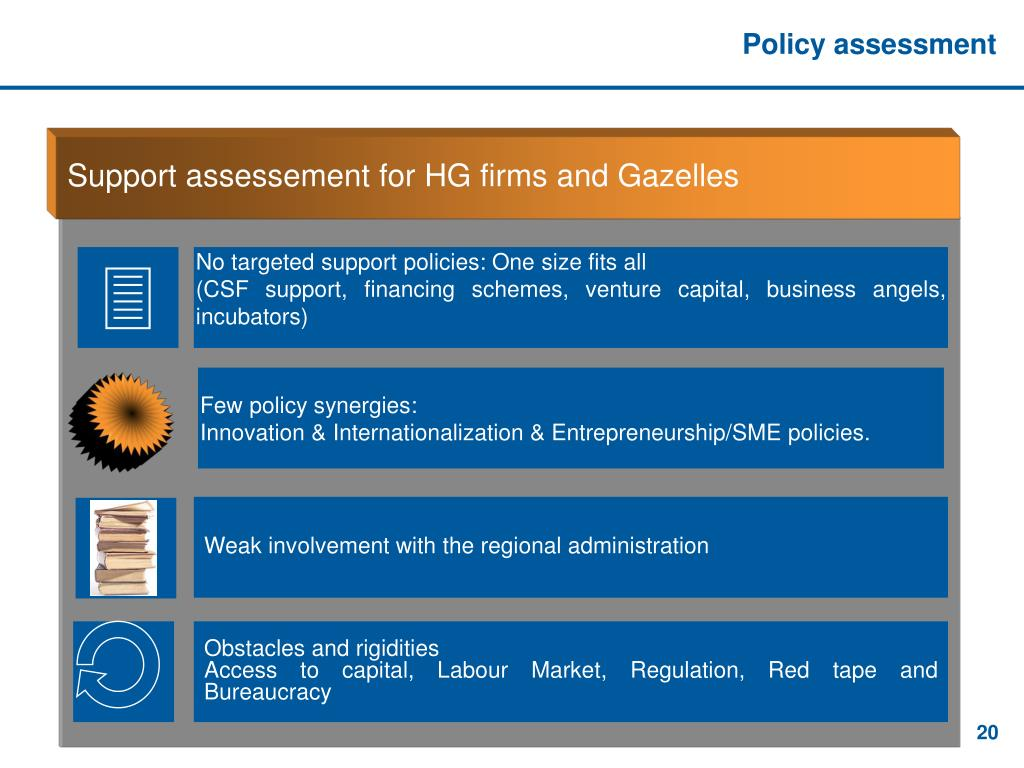 Policy assessment