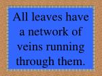 all leaves have a network of veins running through them