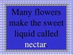 many flowers make the sweet liquid called nectar