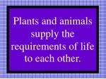 plants and animals supply the requirements of life to each other