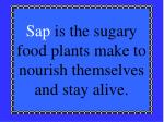 sap is the sugary food plants make to nourish themselves and stay alive