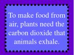 to make food from air plants need the carbon dioxide that animals exhale