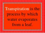 transpiration is the process by which water evaporates from a leaf