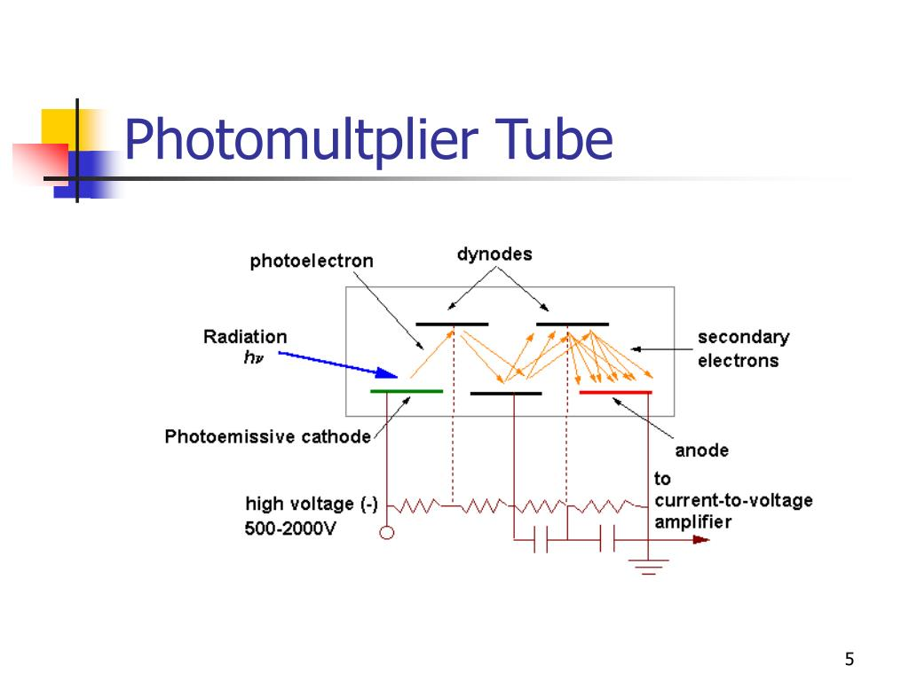 Photomultplier Tube