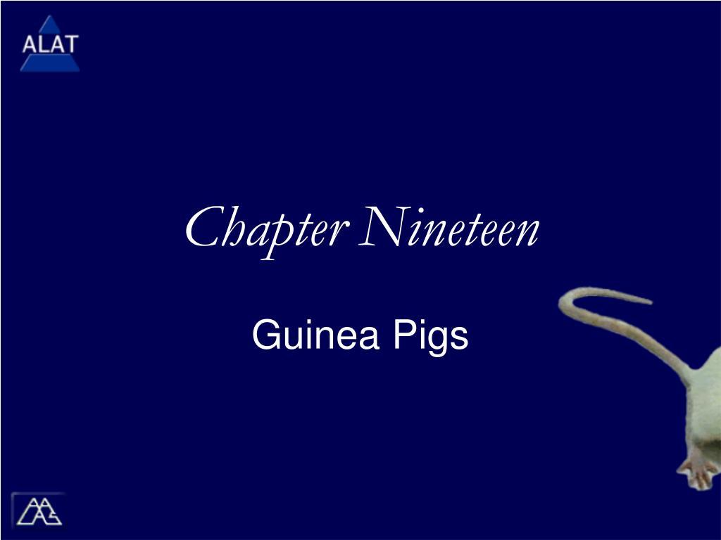 chapter nineteen l.