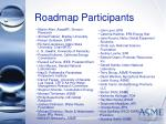 roadmap participants