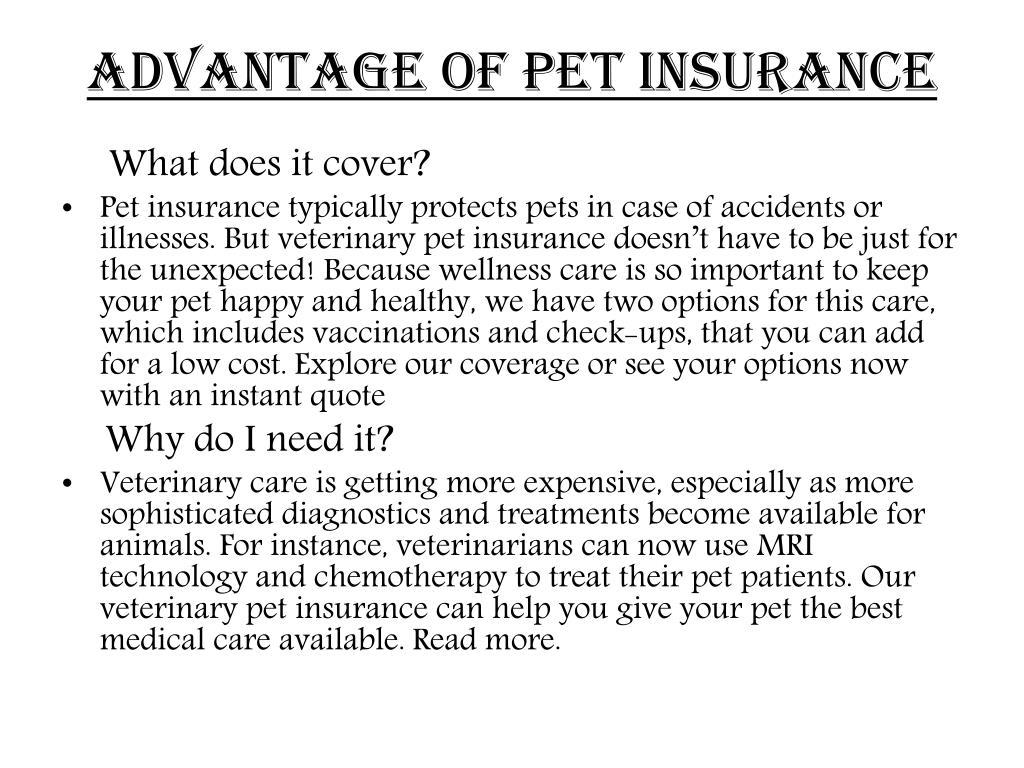 ADVANTAGE OF PET INSURANCE