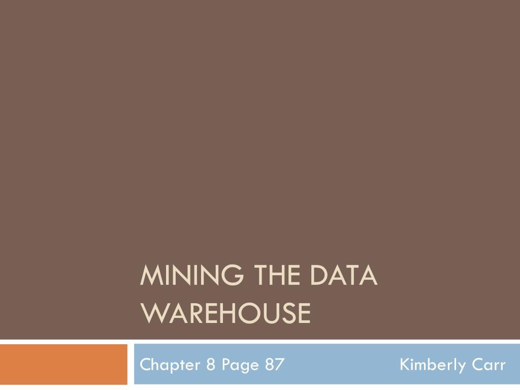 mining the data warehouse l.