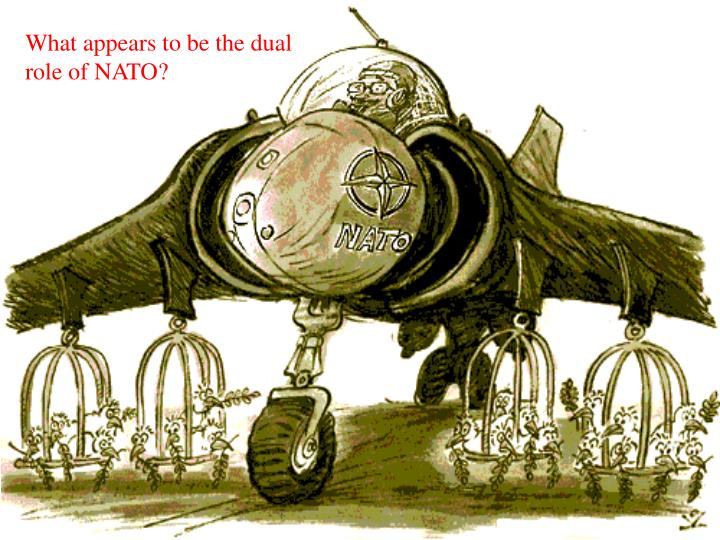 What appears to be the dual role of NATO?