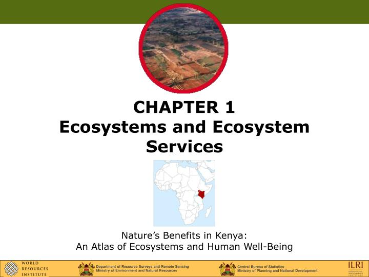 chapter 1 ecosystems and ecosystem services n.