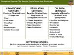 ecosystem services the benefits people derive from ecosystems