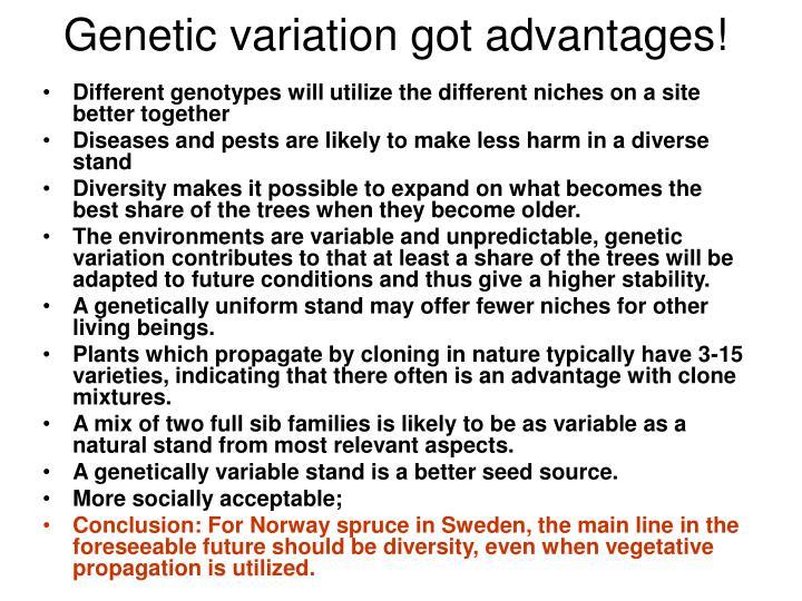 Genetic variation got advantages!