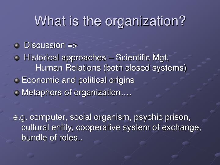 What is the organization