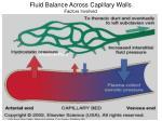 fluid balance across capillary walls factors involved