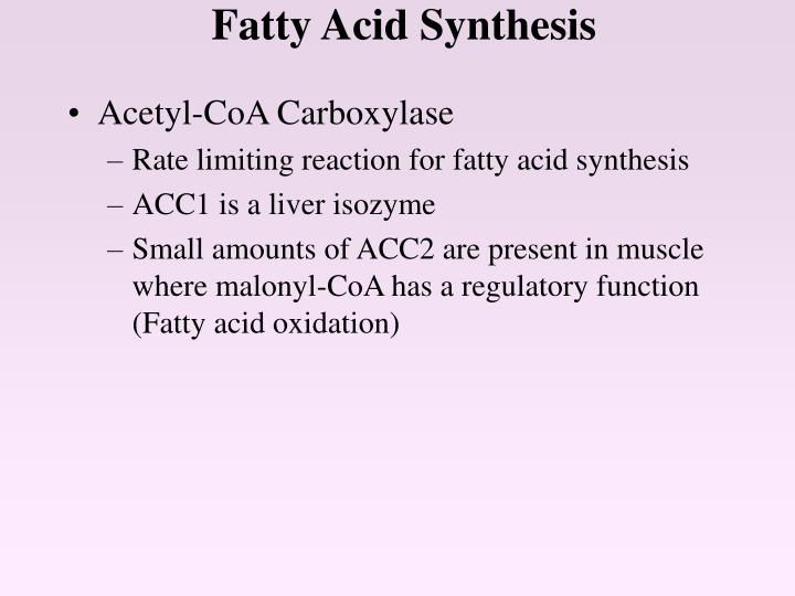 fatty acid sysnthesis We get most of our fatty acids from our diet, but our cells also make enzymes that can construct most of our fatty acids, if needed the construction of fatty acids is a stepwise process, adding carbon atoms two at a time to the growing chain.
