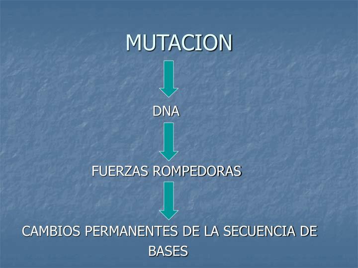 Mutacion2