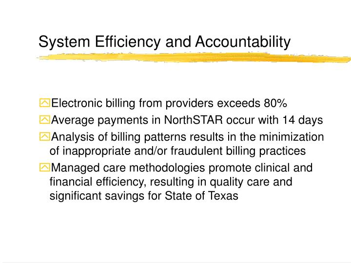 System Efficiency and Accountability