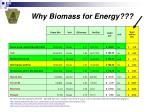 why biomass for energy