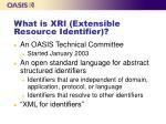 what is xri extensible resource identifier