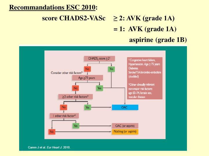 Recommandations ESC 2010