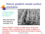 texture gradient reveals surface orientation
