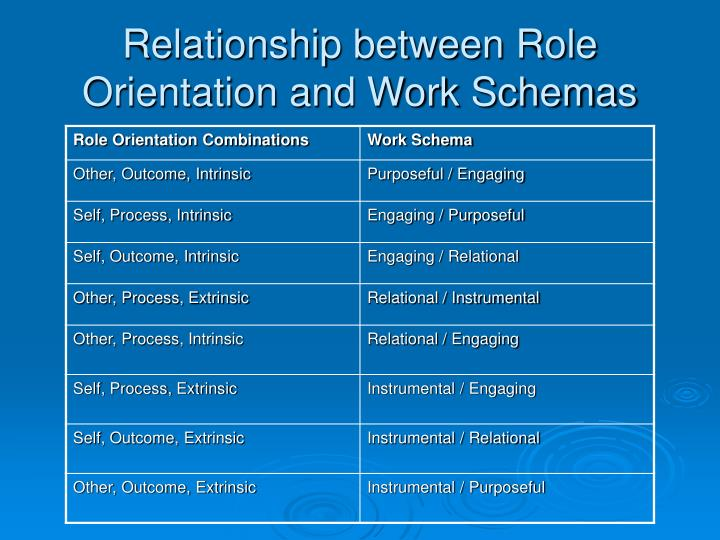 Relationship between Role Orientation and Work Schemas