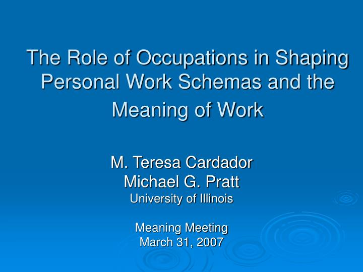 The role of occupations in shaping personal work schemas and the meaning of work