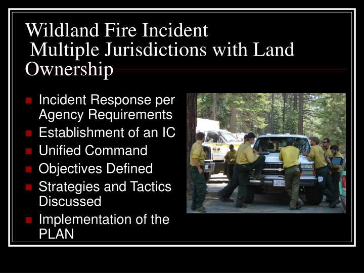 Wildland Fire Incident