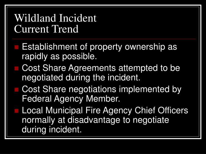 Wildland Incident