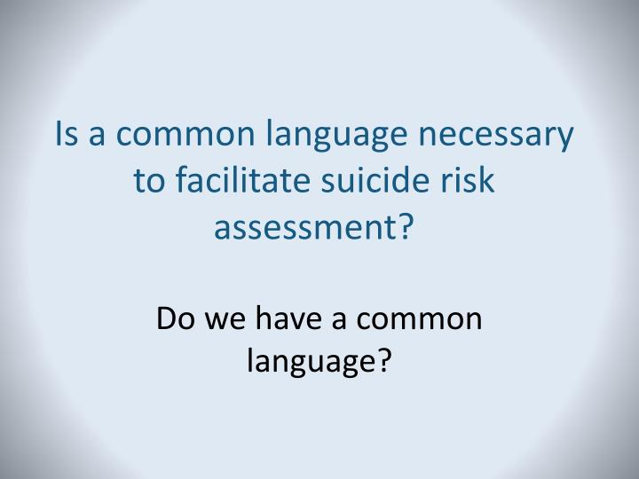 Is a common language necessary to facilitate suicide risk assessment?
