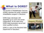 what is dors