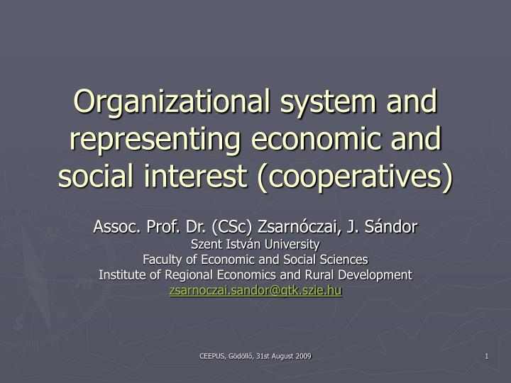organizational system and representing economic and social interest cooperatives n.