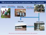milk procurement system in a typical farmers dairy organisation
