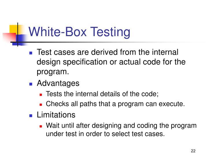 White-Box Testing