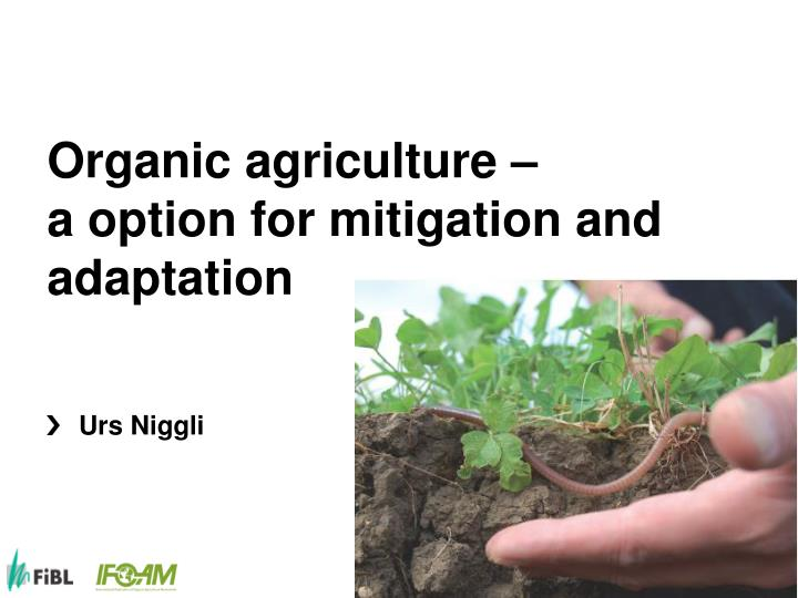 organic agriculture a option for mitigation and adaptation n.