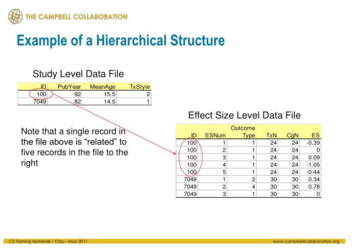 Example of a Hierarchical Structure