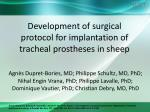 development of surgical protocol for implantation of tracheal prostheses in sheep